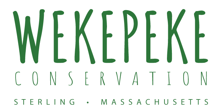 Wekepeke Conservation Area